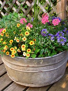 """Meadow Muffin Gardens: Container Planting Ideas (Dracaena spike; Calibrachea, trailing 1"""" petunias; trailing verbena; Diamond Frost Euphorbia, a light airy plant with little white flowers great to use to fill in the gaps)"""
