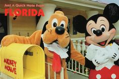 Mickey and Pluto love their fan mail @ Disney World, Orlando