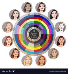Stock Vector Seasonal Color Analysis Palette For All Types Of Female Appearance. Best Colors For 12 Types Stock Vector - Illustration of matching, deep: 156002454 Light Spring, Soft Summer, Colors For Skin Tone, Neutral Skin Tone, Seasonal Color Analysis, Beauty And Fashion, Color Me Beautiful, Soft Autumn, Color Harmony