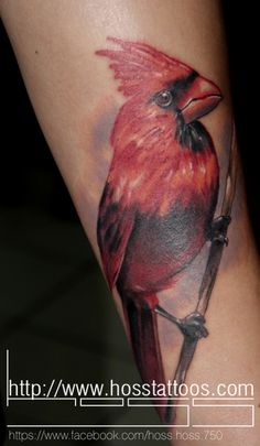 Bird by Hoss Cruz-Bearcat Tattoo Gallery-Little Italy-San Diego, CA