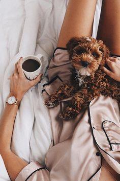 puppy and a cup of coffee @jelenamarija   kapten-son.com