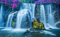 водопад, цветы, камни, мох