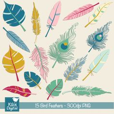1000 images about birds of a feather clipart on pinterest for Feathered birds for crafts