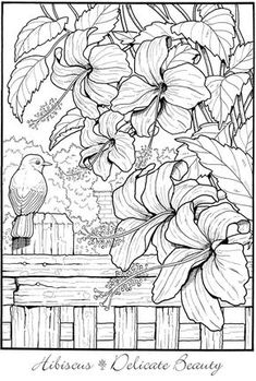 Design For Kids Free printable coloring pages for children that you can print out and color. Garden Coloring Pages, Printable Adult Coloring Pages, Coloring Pages To Print, Coloring Book Pages, Coloring Pages Nature, Kids Coloring, Colorful Garden, Colorful Flowers, Creative Haven Coloring Books