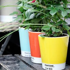 Every designer should have this in their yard or patio!! | Serax: Pantone Vases & Flower Pots, Fab.com |