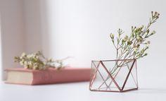 glass terrarium 🌿https://www.etsy.com/shop/BrumalArt?ref=hdr_shop_menu