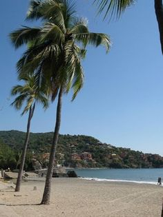 The beach in Zihuatanejo