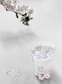 """""""sakurasaku glass"""" (condensed water on the glass will make a cherry-blossom-shaped mark on the table)"""