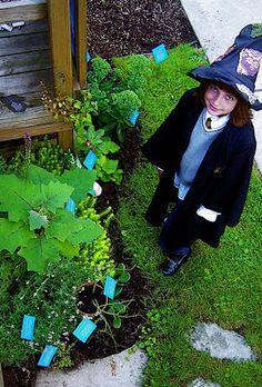 http://artofgardeningbuffalo.blogspot.com/2008/12/harry-potter-garden.html