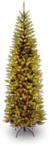 8. Kingswood Fir Pencil Tree