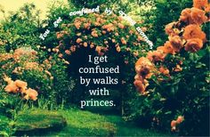 """You get confused by crying woman, I get confused by walks with princes."""