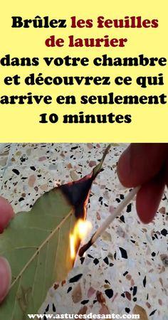 Brûlez les feuilles de laurier dans votre chambre et découvrez ce qui arrive en seulement 10 minutes #BayLeaves #feuillesdeLaurier #chambre #astucessanté #santé #Brûler