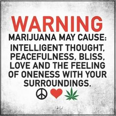 No Bad Haze is a Canadian Dispensary online for cannabis products. Buy weed from No Bad Haze without any doubts. Weed Humor, Cannabis Plant, Pin On, Medical Marijuana, Hemp, Peace