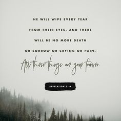 Verse of the Day - Revelation 21:4