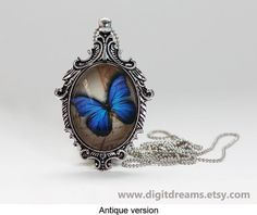 Ma01: Morpho Butterfly Nymphalidae antique/vintage by DigitDreams