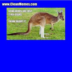 #CleanMemes #CleanFunnyImages www.CleanMemes.com