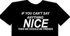 If you can't say anything nice then we should be friends t shirt - it's a shirt thing