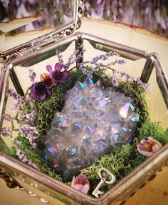 Quarts crystal in glass terranium