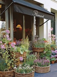 baskets planters by my front door (Flamant Flower Shop, Paris ,petit potager) Flower Market, Flower Shops, Deco Floral, Shop Fronts, Belle Photo, Garden Inspiration, Container Gardening, Outdoor Gardens, Beautiful Flowers