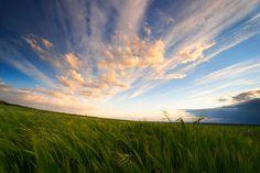 """500px / Photo """"Prairies of Castilla"""" by Andrés López"""