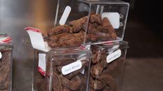 Délices Morio-Choco  Enrobage Chocolat noir de St Domingue 70% Vers Morio  Chocolat-Fusion