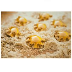 Dumplings in a dumplings way. Flour like a sand. I miss summer...🌲⛄🥟🏖️ ________ 📷: @dariuszgolik.fotografia  #pieróg #pierogi #dimsum #fataya #kraków #cracow #cornish pasty #polska #pielmieni #food #gastropepole #gastromeals #gastrohetman #empanada #foodporn #masterchef #wonton  #dumplings #polishfood #restaurant #golddumplingnackle #coxinhas #jiaozi #dumplingnackle #gastrojewellery Polish Recipes, Dim Sum, Empanadas, Dumplings, Food Porn, Restaurant, Meals, Summer, Jewelry