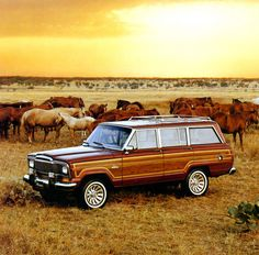 Jeep Grand Wagoneer-My grandpa had one just like this. Loved riding in the very back with the window rolled down.