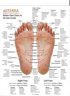 Reflexology Essential Oils