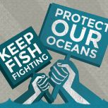I played my part in changing Europe's fisheries for good. Check out the #FishFight story:http://www.fishfight.net