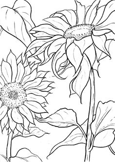 Embroidery Patterns A Guide To Buying Adult Coloring Books Sunflower Coloring Pages, Sunflower Art, Mandala Coloring, Printable Adult Coloring Pages, Coloring Book Pages, Coloring Sheets, Fabric Painting, Painting & Drawing, Flower Sketches
