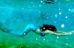mermaid pictures - Google Search