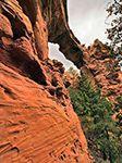 Hiking in Arizona: Devil's Bridge Trail    rv, rving, rvers, hiking, day hike, weekend warriors, Cruise America