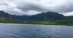 °Super toll um Delfine & Wale zu sehen :) Am Besten mit dem Boot rausfahren. °Great to see dolphins & whales :) The best way to get out by boat. Tolle Hotels, Der Bus, Wale, Am Meer, Dolphins, Hawaii, Coast, River, Mountains