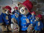 PINOCCHIO By DREAM'S BEARS - Bear Pile