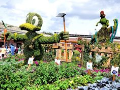 """2015 Epcot International Flower & Garden Festival""""Goofy About Spring"""" topiaries located at the main entrance of Epcot at the Walt Disney World Resort"""