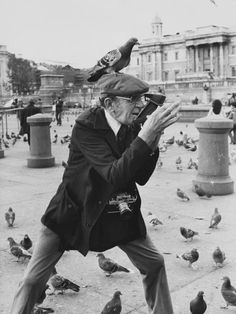 'An elderly photographer in Trafalgar Square, London, takes a polaroid photograph with a pigeon perched on his cap',1978 ~photo by Shirley Baker~♛