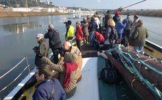 Alcácer com Vida arranca com passeio de barco dia 20 de Março 2016
