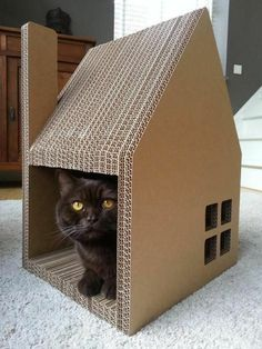 Diy Cardboard Furniture, Pet Furniture, Cardboard Cat House, Cat Perch, Cat City, Cat Accessories, Cool Pets, Pet Beds, Dog Houses