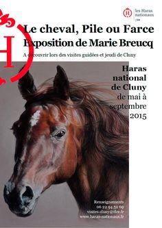 """Exposition """"Le cheval, pile ou farce"""" de mai à septembre 2015 au Haras de Cluny."""
