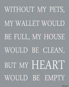 #truth #love #animals