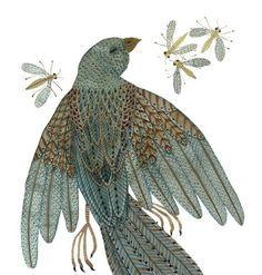 bird illustration. nice colors