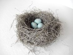 Bird Nest Woodland Wedding Decor Handmade with Pale Blue Green