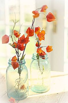 Gardening Autumn - Autumn afternoon light - With the arrival of rains and falling temperatures autumn is a perfect opportunity to make new plantations Blue Mason Jars, Chinese Lanterns, Color Themes, Favorite Color, Flower Arrangements, Wedding Flowers, Creations, Pastel, Crafts