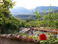 Korwneia Voiwtia,Greece
