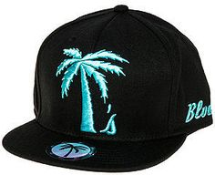 46899de21a486 BLVD Supply The Tree Schooler Snapback Hat