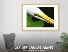 Discover «Focused», Limited Edition Fine Art Print by Glink - From $29 - Curioos
