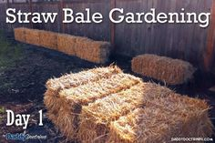 this is pretty much how I started mine.  good blog. Straw Bale Gardening: Introduction