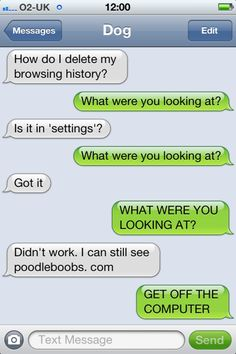 Texts from dog...hilarious   poodle boobs