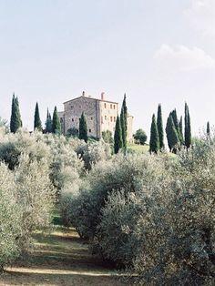 Cinigiano (Toscana, Italia) - Castello di Vicarello sulla cima, ai piedi olivi e cipressi
