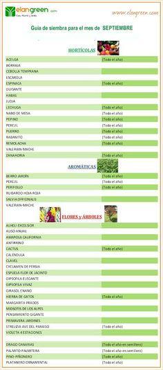 Guía de siembra mes de SEPTIEMBRE www.elangreen.com